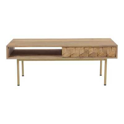 Swader Coffee Table with Storage - AllModern