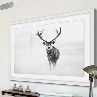 'Elk Stare' Framed Photographic Print on Paper - AllModern