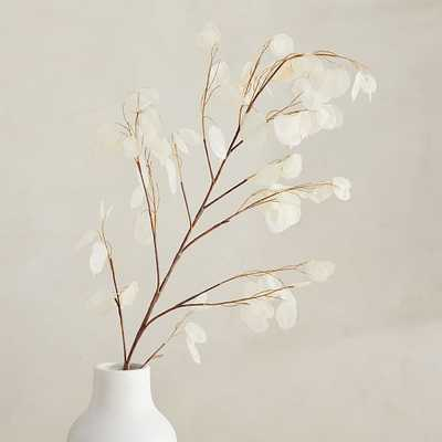 "Faux Lunaria Branch, 44"" - West Elm"
