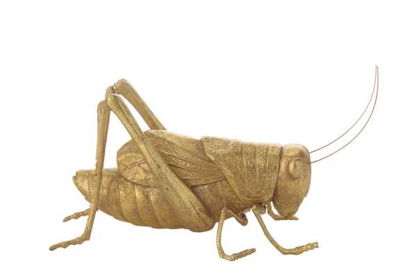 Gold Resin Cricket Figurine - Nomad Home