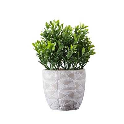 5'' Artificial Boxwood Plant in Pot - Wayfair