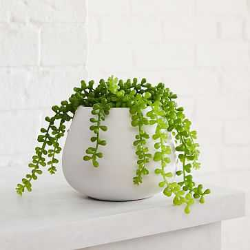 Faux Potted Trailing Succulent + Eva White Ceramic Planter Bundle - West Elm