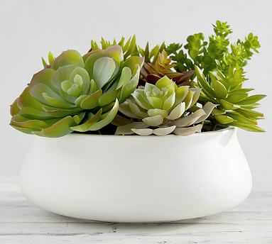Faux Potted Succulent Centerpiece, Multi, XL - Pottery Barn