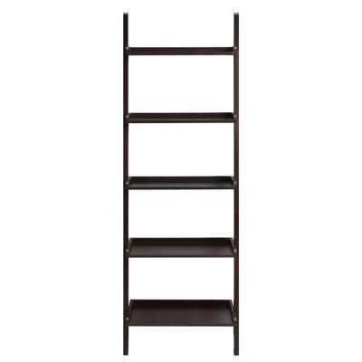 Lundberg Wall Ladder Bookcase - Wayfair