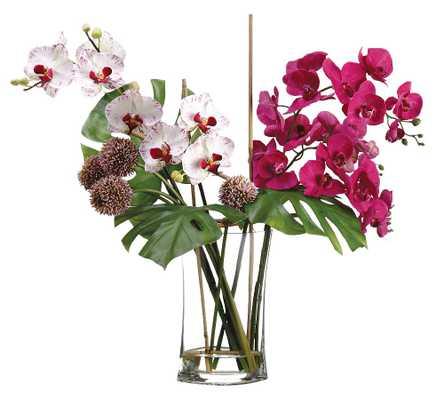 Faux Allium/Phalaenopsis Orchid Arrangement In Glass Vase - Pottery Barn