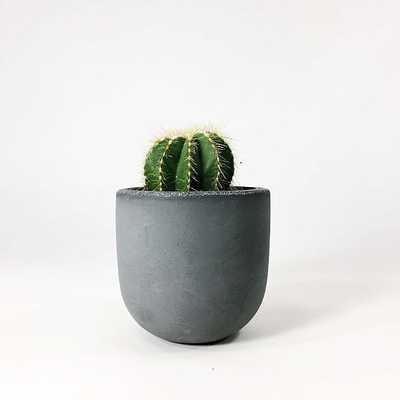 "SETTLEWELL Concrete Bowl Planter, 4"", Dark Gray - West Elm"