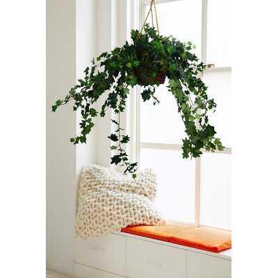 "42"" Artificial Ivy Plant in Basket - Wayfair"