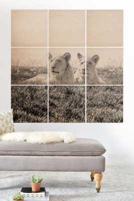 "Magda Opoka Lions Wood Wall Mural - 4' x 4' (Nine 16"" Wood Squares) - Wander Print Co."