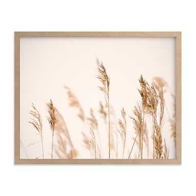 Summer Weeds Framed Art by Minted(R), Natural, 11x14 - Pottery Barn Teen