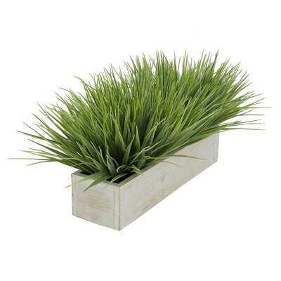 Artificial Onion Grass in Planter - Wayfair