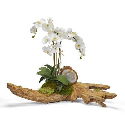 Orchids Floral Arrangement in Planter - Perigold