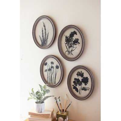 'Oval Botanical Prints Under Glass' - 4 Piece Picture Frame Print Set on Canvas - Wayfair