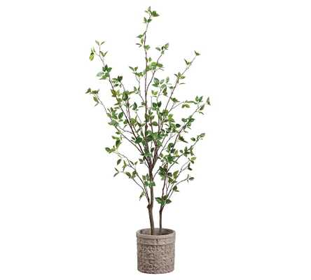 "Faux Cornus Tree In Terra Cotta Planter, 60"" - Pottery Barn"