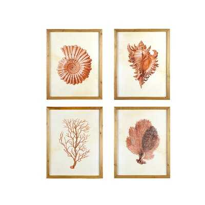 Framed Wall Art With Blue Shells & Coral - 4 Piece Picture Frame Print Set on Wood - Wayfair