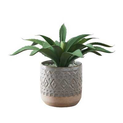5.25'' Artificial Succulent Plant in Pot - Wayfair