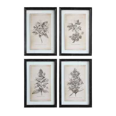 Wood Framed Wall Décor with Floral Images (Set of 4 Designs) - Nomad Home