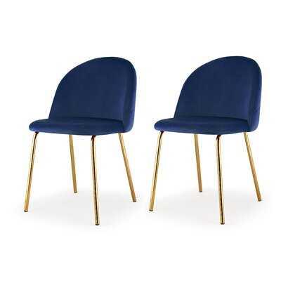 M60 Modern Velvet Chair, Set of 2, Chrome - Wayfair
