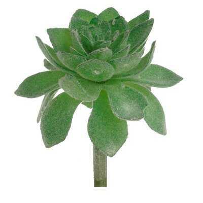 Mini Artificial Agave Succulent - Wayfair