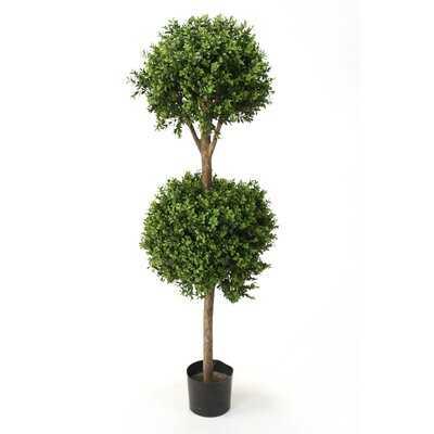 Artificial Boxwood Tree in Pot - Wayfair