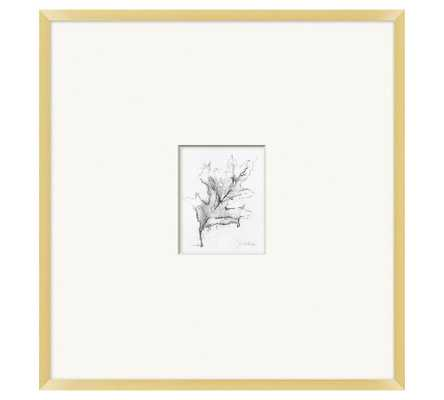 "Charcoal Leaf Sketch Framed Print, 25"" x 26"" - Pottery Barn"