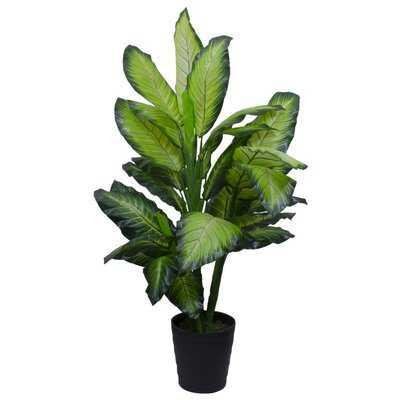 """50"""" Artificial Moss Plant in Pot - Wayfair"""