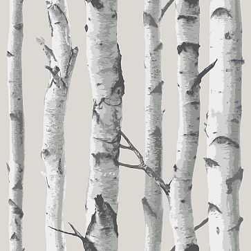 Birch Tree Peel & Stick Wallpaper - West Elm