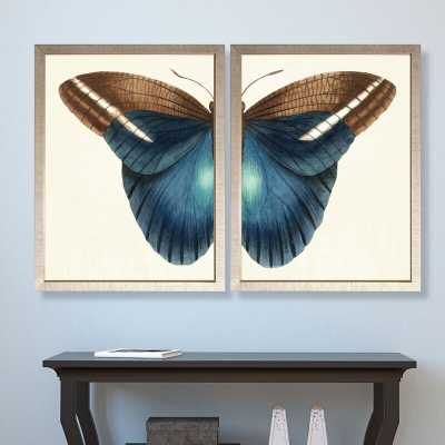 'Butterfly Duo' 2 Piece Framed Graphic Art Set - Perigold