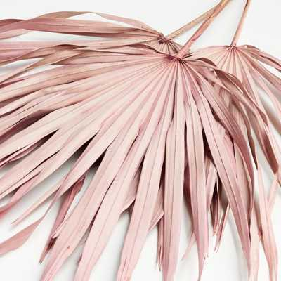 Pink Paper Palms, Set of 3 - Crate and Barrel