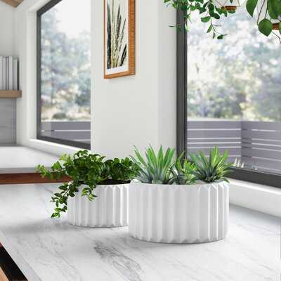 Roland Fluted 2-Piece Ceramic Pot Planter Set - AllModern