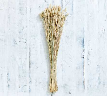 Faux Dried Phalaris Bundle, Natural - Pottery Barn