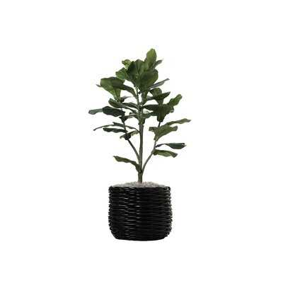 "42"" Artificial Fiddle Leaf Fig Tree in Planter - Wayfair"