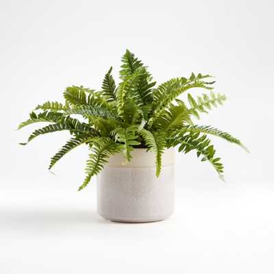 Artificial Potted Fern - Crate and Barrel