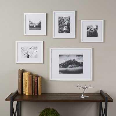 5 Piece Picture Frame Set - Birch Lane