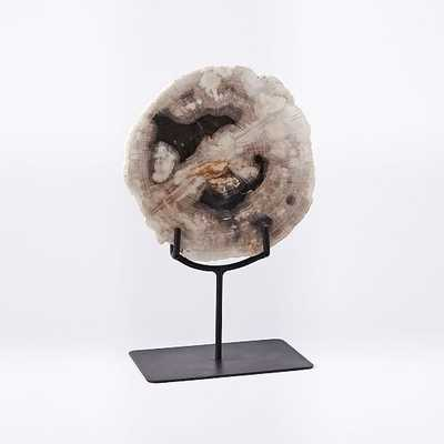 Petrified Wood Object on Stand, Small, Set of 2 - West Elm
