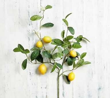 Faux Citrus Branch, Lemon - Pottery Barn