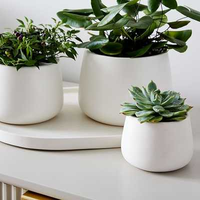 Dahlia Planter Set With Pill Tray, White, Earthenware, Set of 3 - West Elm