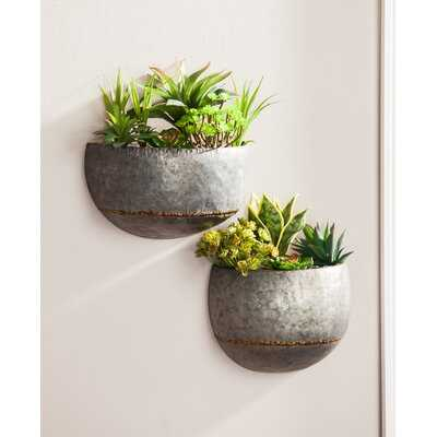Elena 2-Piece Metal Wall Planter Set - Birch Lane
