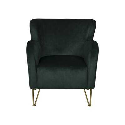 Swineford Wingback Chair - Wayfair