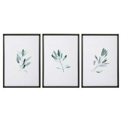 Simple Sage by Emma Scarvey - 3 Piece Picture Frame Print Set Plastic/Arcylic - Wayfair