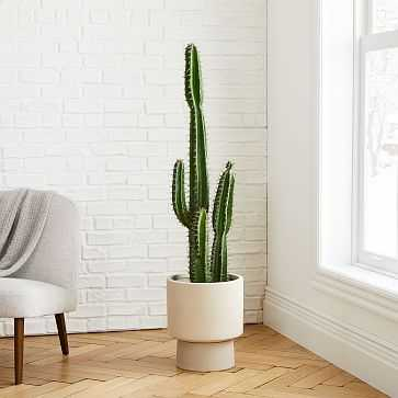 Faux Potted Cactus + Bishop Sand Planter Bundle - West Elm