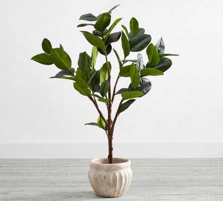"""Faux Potted Rubber Tree, 51.5""""H - Pottery Barn"""