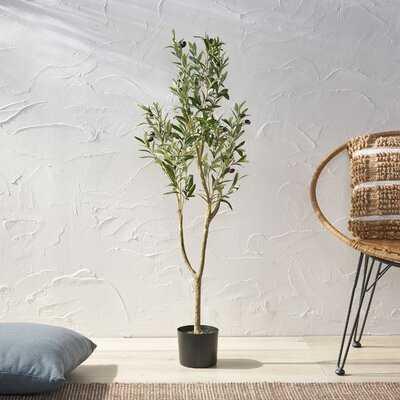 Artificial Olive Tree in Pot - Wayfair