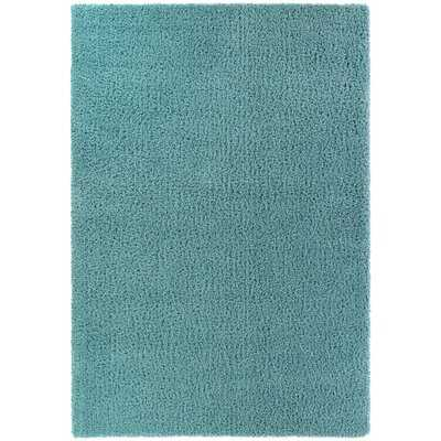 Wayfair Basics Summertown Shag Teal Rug - Wayfair