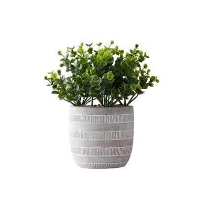5'' Artificial Boxwood Plant in Pot - Wayfair