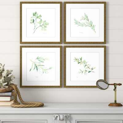 'Herbs' 4 Piece Picture Frame Graphic Art Set - Birch Lane