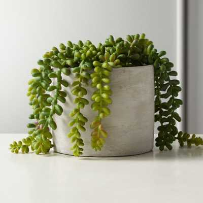 Faux Potted Burro's Tail - CB2