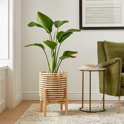 Adobe Planter, Single - West Elm