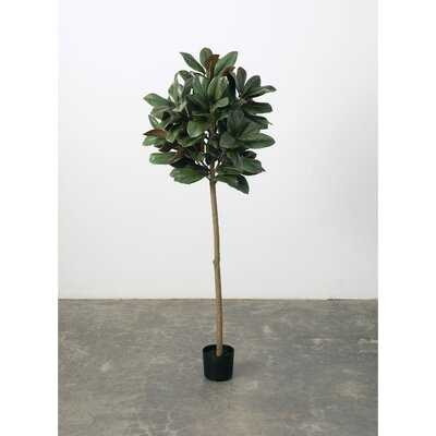 Artificial Magnolia Tree in Pot - Wayfair