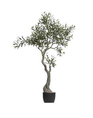 "60-1/4""H Faux Olive Tree in Pot - Nomad Home"