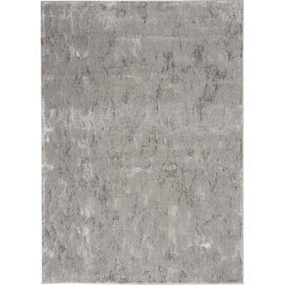 Royal Terrace Modern Abstract Silver Grey Area Rug - Wayfair